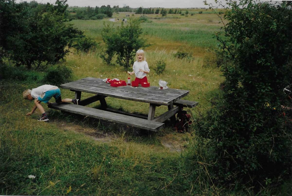 Nihøje-1995
